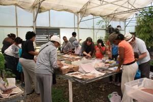Mosaic Workshop, 5:19